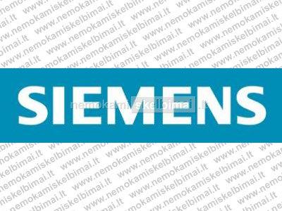 Siemens sucht: Ingineeren, Maurer, Maler, Trocken