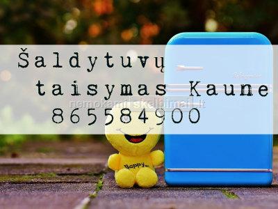 saldytuvu remontas Kaunas 865584900