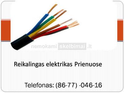 Reikalingas Elektrikas Prienuose 867704616