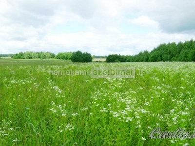 Parduodamas 1, 75 ha žemės sklypas Rukainių k